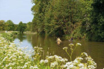 roofvissen op de Biesbosch